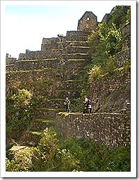 P6120631 thumb - Como subir o Huaynapicchu - Peru
