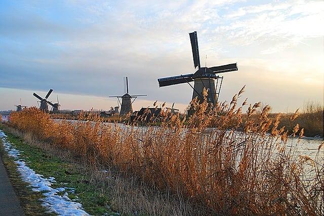 DSC 0573 - Kinderdijk: os verdadeiros moinhos holandeses
