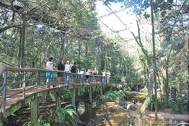 Atrações de Foz do Iguaçu