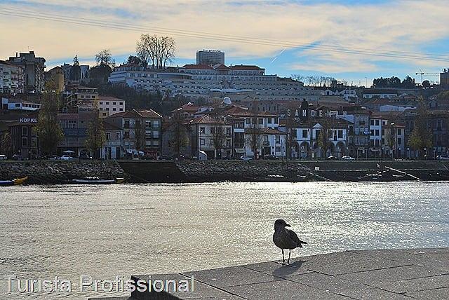 DSC 0483 1 - Fotolog - Porto, uma viagem no tempo