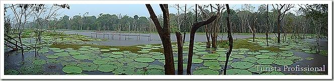 DSC00155 thumb - Roteiro de 5 dias na Amazônia