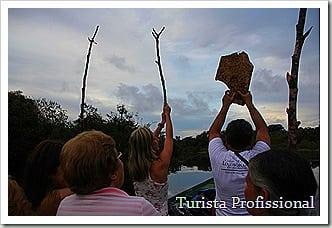 IMG 6802 3629x2419 thumb - Roteiro de 5 dias na Amazônia