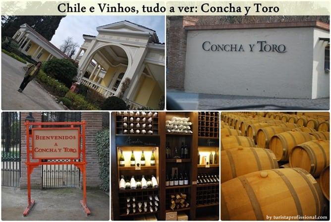 Chile e Vinhos, tudo a ver: Concha y Toro