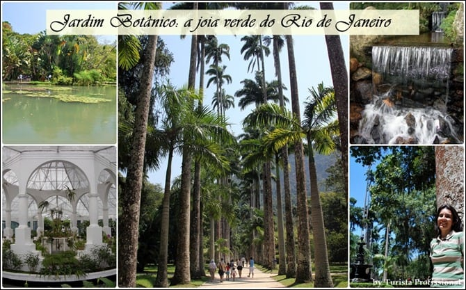 JB thumb - Jardim Botânico do Rio de Janeiro: a joia verde da cidade
