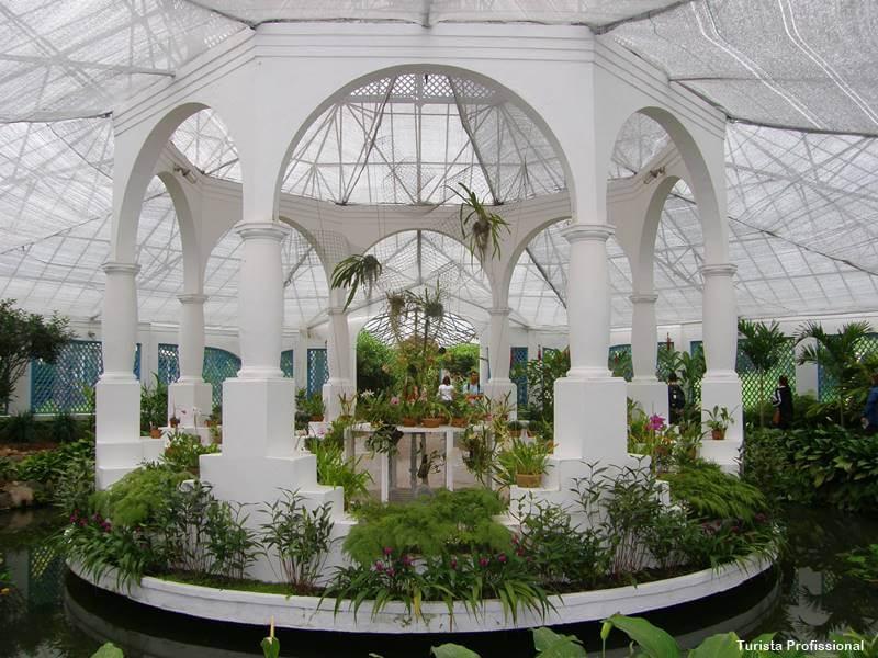 o que tem no jardim botanico do rio de janeiro 1 - Jardim Botânico do Rio de Janeiro: a joia verde da cidade