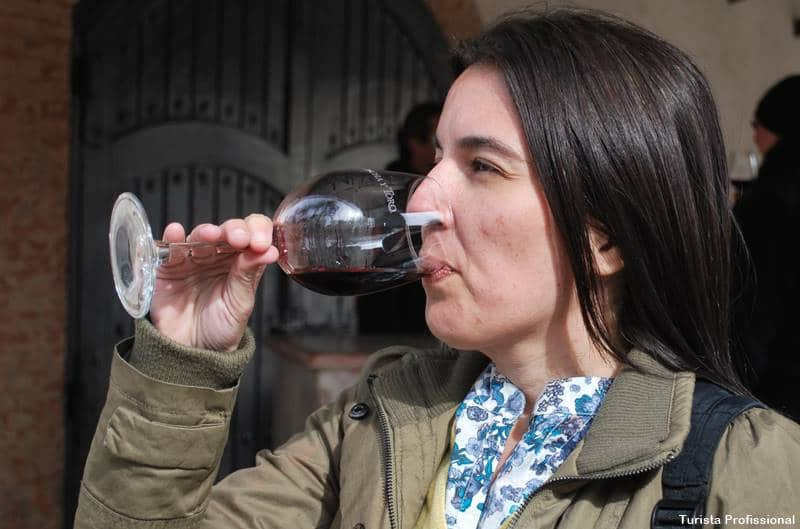 prova de vinhos chilenos - Chile e Vinhos, tudo a ver: Concha y Toro