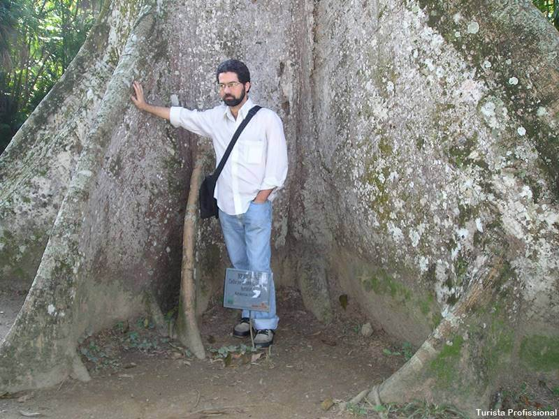 turista profissional rio de janeiro - Jardim Botânico do Rio de Janeiro: a joia verde da cidade