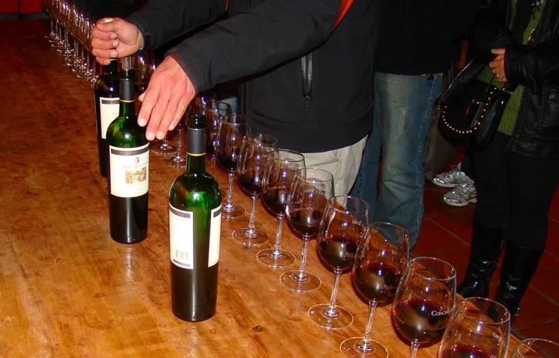 degustação de vinho chileno
