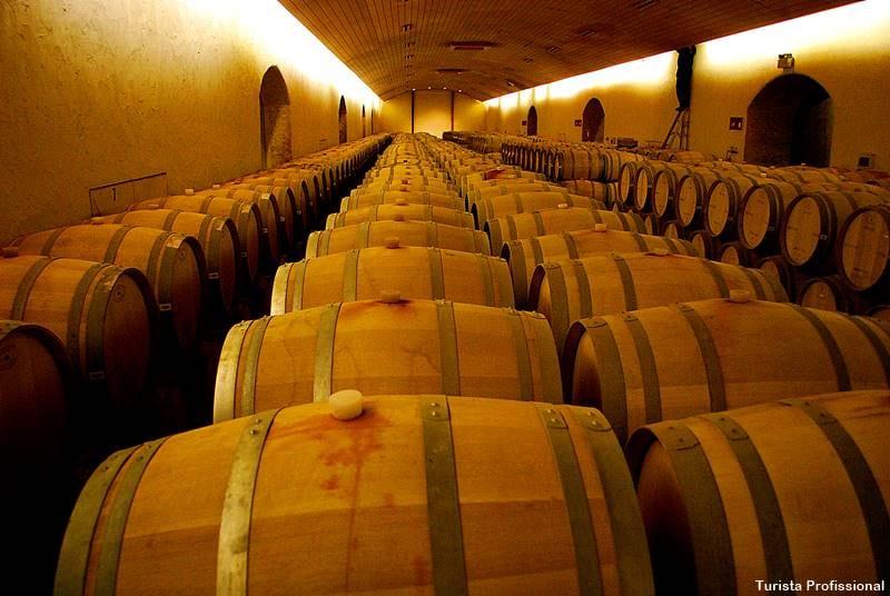vinho chileno - Chile e Vinhos, tudo a ver: Concha y Toro