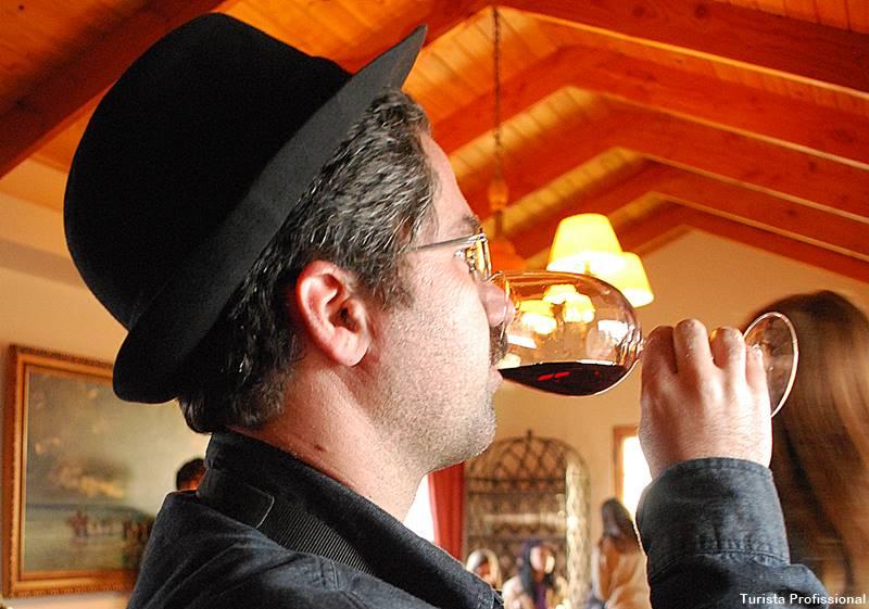 vinho concha y toro chile - Chile e Vinhos, tudo a ver: Concha y Toro