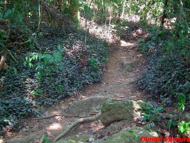 Foto2Caminhospelamata1 - Trilhas em Niterói: as melhores trilhas da cidade