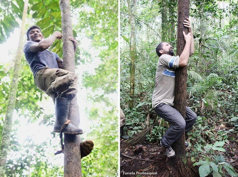 o que tem na Amazônia