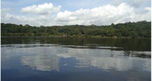 Amazônia – 3 dias de surpresas, emoção e encantamento - dia 1
