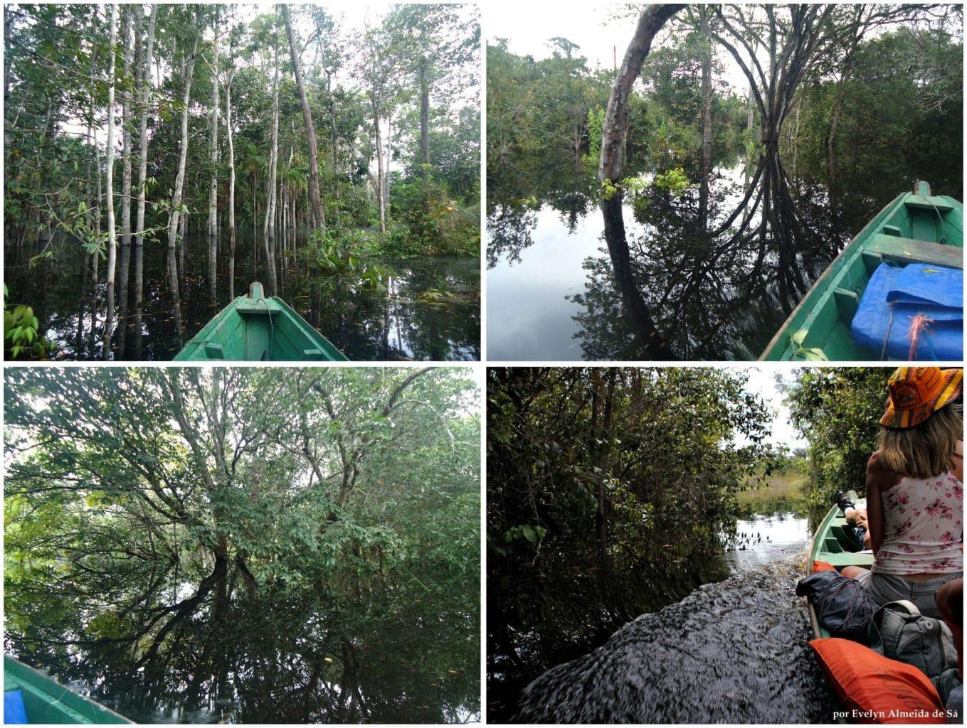 Evelyn 4 - Roteiro Amazônia – dia 2