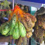 Manaus ervas e temperos 3 150x150 - Comidas e bebidas típicas da Amazônia