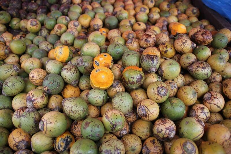 frutas da amazonia tucuma - Bebidas e comidas típicas da Amazônia