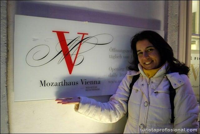 DSC 04801 - O que fazer em Viena: atrações turísticas e como chegar nelas