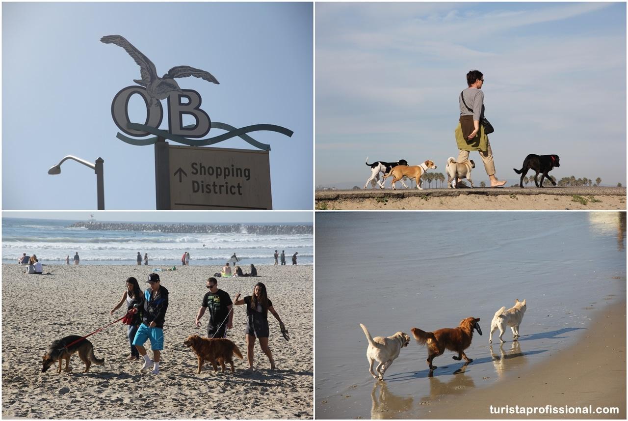 Dog Beach de San Diego, um lugar bom pra cachorro