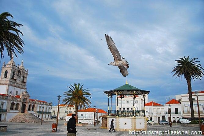 Nazar Portugal 23 - Nazaré, Portugal: ondas gigantes e tradição portuguesa