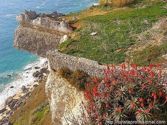 Nazar Portugal 58 - Nazaré, Portugal: ondas gigantes e tradição portuguesa