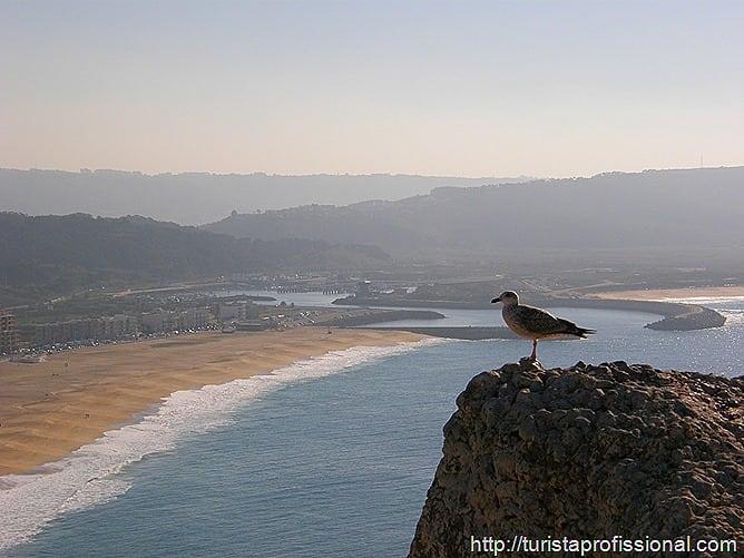 Nazar Portugal 64 - Nazaré, Portugal: ondas gigantes e tradição portuguesa