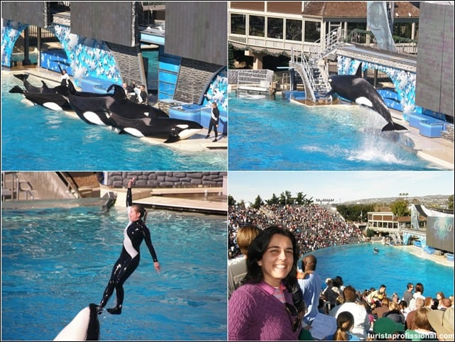 SeaWorldSanDiego - Visitando o SeaWorld de San Diego
