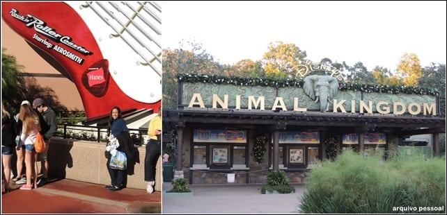 DisneyOrlando - Lua de Mel na Disney da Flórida