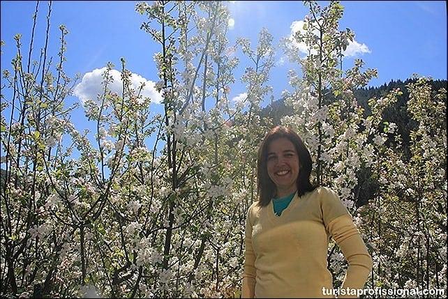 IMG 0898 - Primavera em Portugal - olhares