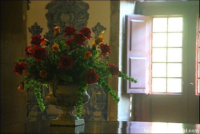 IMG 9140 - Primavera em Portugal - olhares