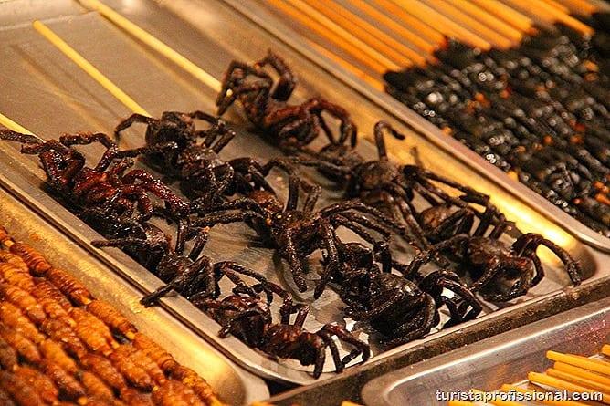 Pequim China 11 - O que fazer e o que comer em Pequim? Escorpião, lacraia, besouro?