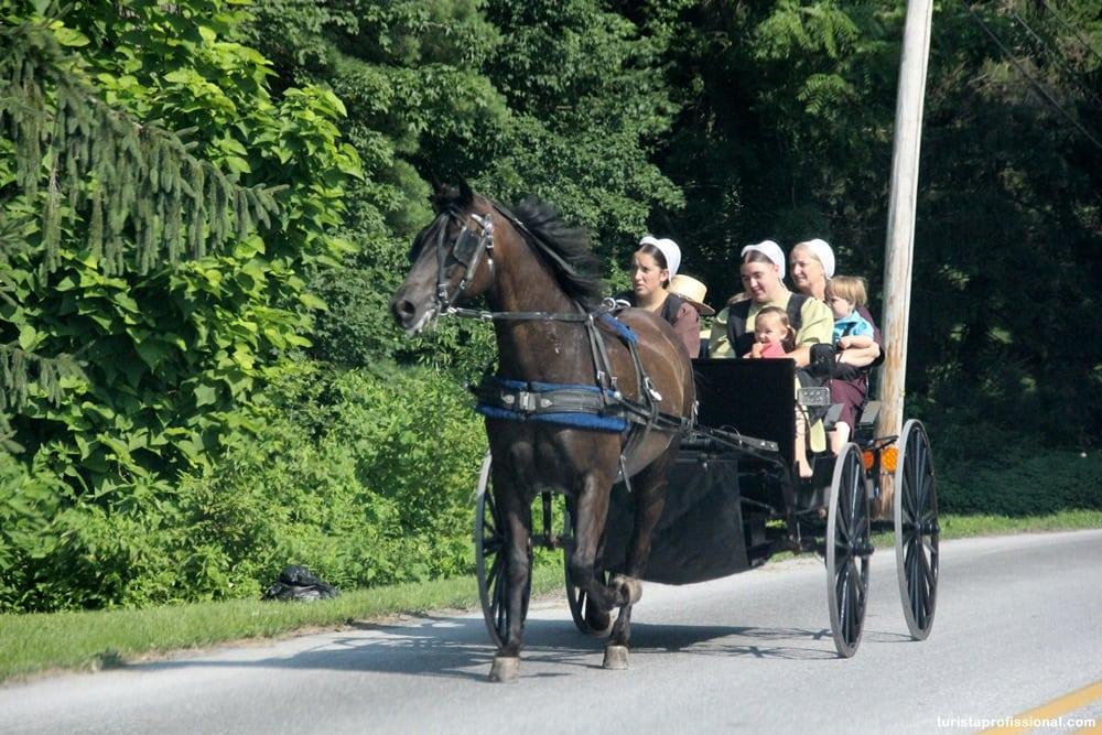 IMG 8986 - O dia em que vi um Amish pela primeira vez!