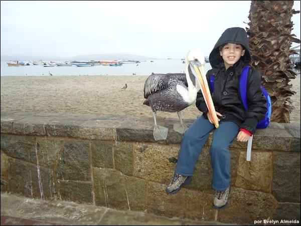 dicas viagem Peru - Roteiro de viagem pelo Peru com criança: Paracas