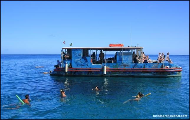 Dicas Fernando de Noronha - Passeio de barco em Fernando de Noronha