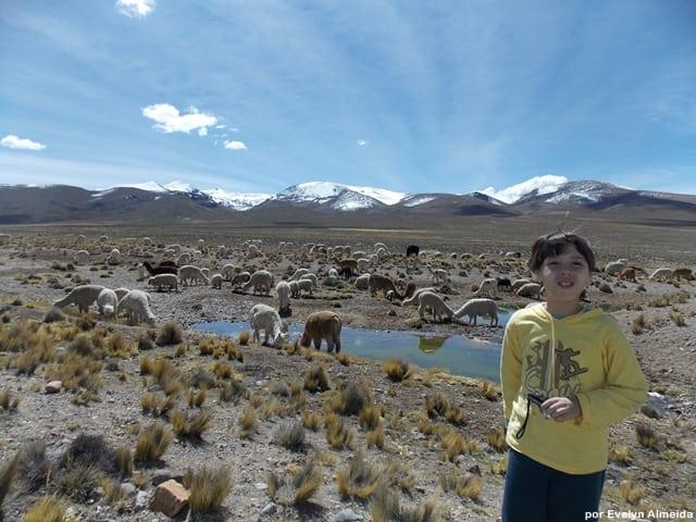 dicas Peru - Roteiro de viagem pelo Peru com criança: Vale do Colca