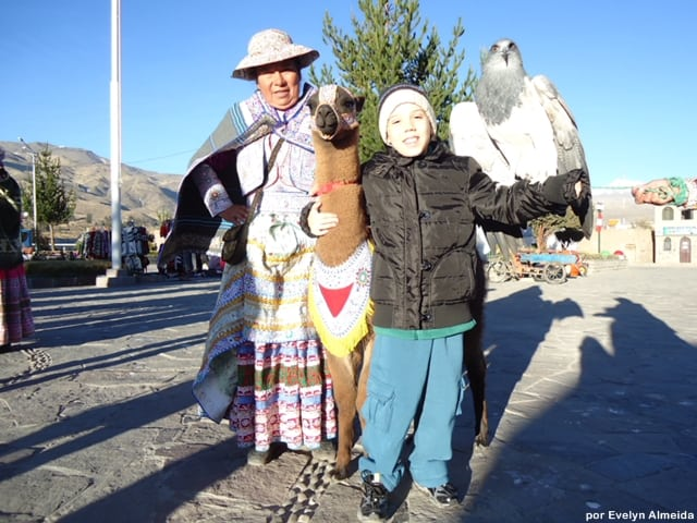 o que fazer no Peru - Roteiro de viagem pelo Peru com criança: Vale do Colca