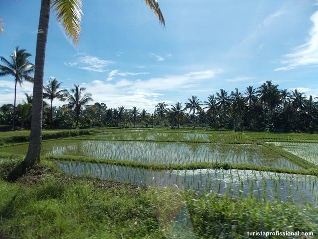 dicas Indonésia - O que visitar em Bali: Ulun Danu, o Templo do Lago