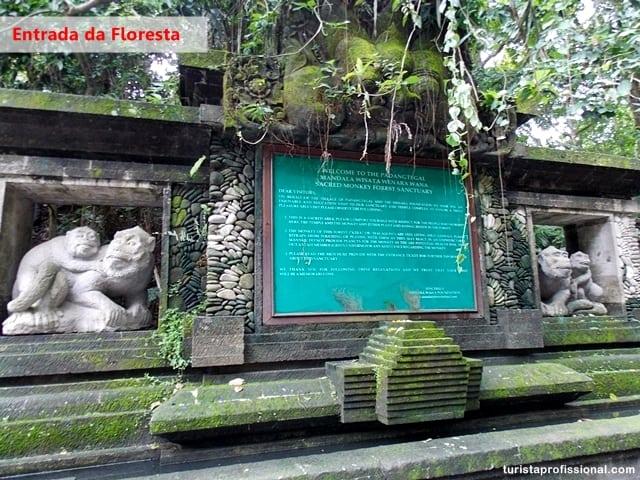 dicas Indonésia1 - Floresta dos Macacos, em Ubud