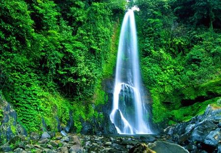 Bali Git Git Falls - Norte de Bali: Lovina Beach e a cachoeira Gitgit