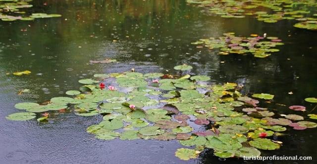 roteiro em Paris - Jardins de Monet em Giverny - nos quadros e ao vivo