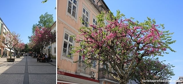 o que visitar em Braga - Roteiro de um dia em Braga, a Roma Portuguesa