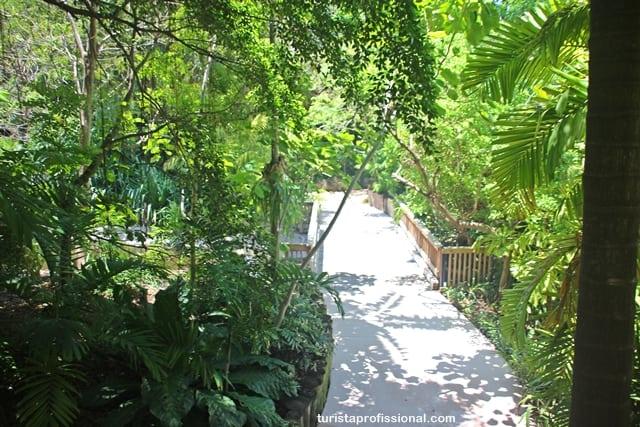 turismo Miami - Jungle Island - atração para crianças em Miami