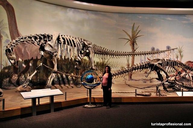canadá dicas - Seguindo os dinossauros do Canadá - Royal Tyrrel Museum