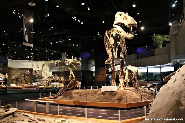 dicas Canadá - Seguindo os dinossauros do Canadá - Royal Tyrrel Museum