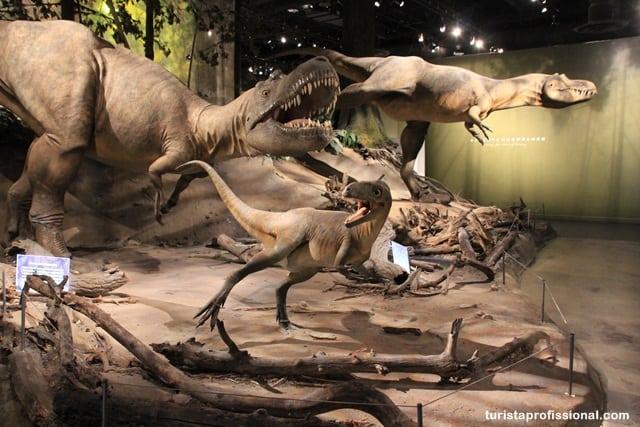 o que ver - Seguindo os dinossauros do Canadá - Royal Tyrrel Museum