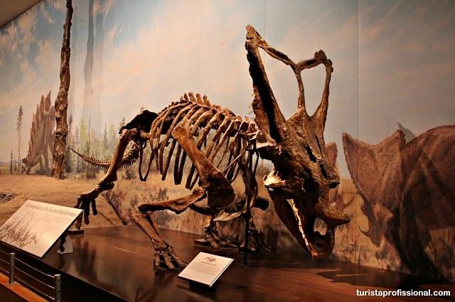 o que visitar no canadá1 - Seguindo os dinossauros do Canadá - Royal Tyrrel Museum