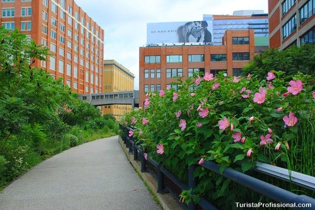 o que ver em Nova York - The High Line:  os jardins suspensos de New York