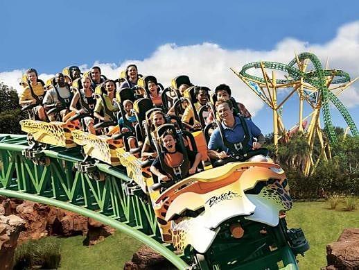 dicas da disney - As principais atrações do Busch Gardens, na Flórida