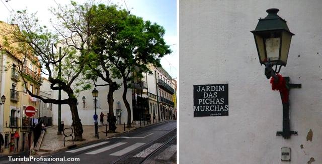 praça Lisboa