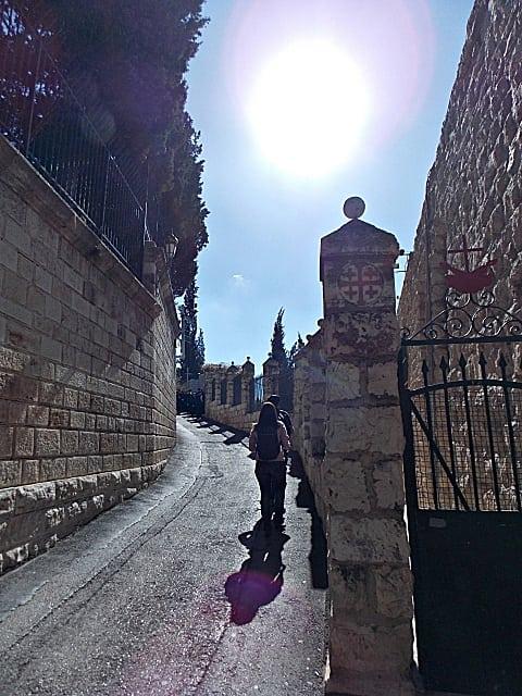 dicas jerusalém - Monte das Oliveiras em Jerusalém