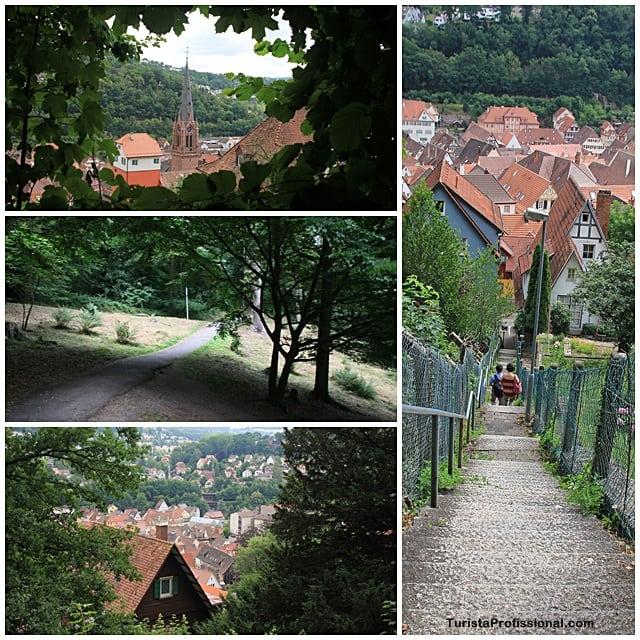 floresta negra - Roteiro de 5 dias seguindo os passos dos Waldesians e Huguenotes na Alemanha e Suíça